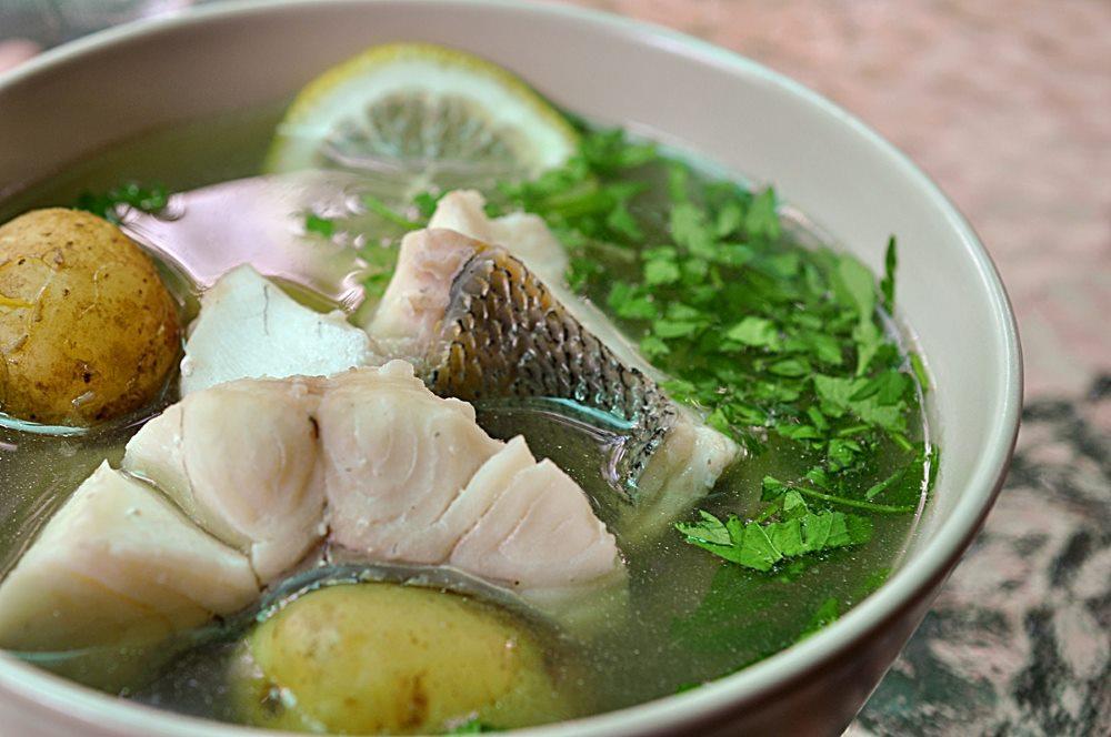 рыбный суп при гастрите