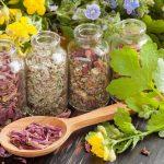 травяной сбор для гастрита