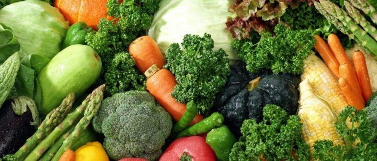какие овощи можно при гастрите