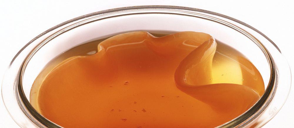 Можно ли пить чайный гриб при гастрите